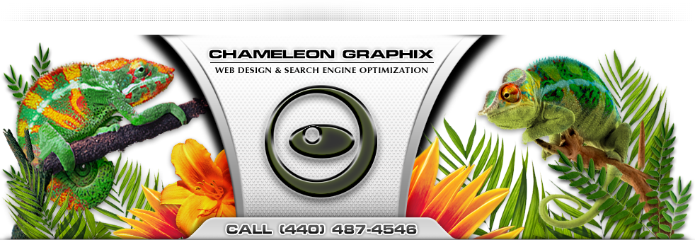 Chameleon Graphix Website Design & Search Engine Optimization in Cleveland, Ohio.
